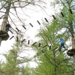 Free and Single Parents can take their families along to Go Ape too