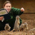 Young Free and Singles will love a day at the zoo